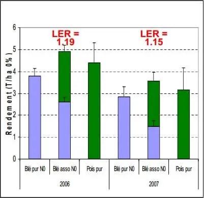 Figure 4 : Rendement du blé dur pur et en associé INRA Toulouse(2006/2007)