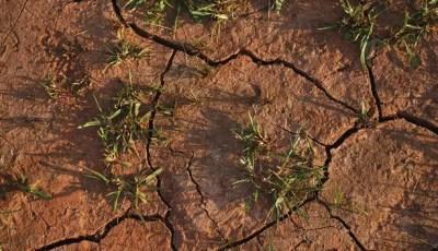 Définition du déficit hydrique