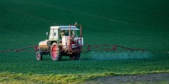 Rétention des pesticides par les argiles