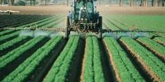 Toxicité des pesticides
