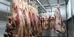 Étapes de la filière viande