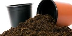 L'étude du substrat utilise dans l'exploitation