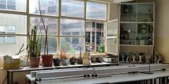 أعداد معمل لتشخيص الأمراض النباتية