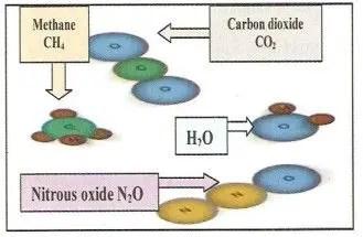 شكل )4غازات ظاهرة ألأحتباس الحراري.الشحات200