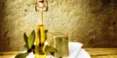 زيت الزيتون السوري وتكريره ومقترحات لتحسين نوعيته
