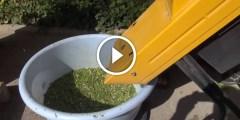 فيديو .. جهاز لتقطيع أوراق الأشجار وعمل الكومبوست