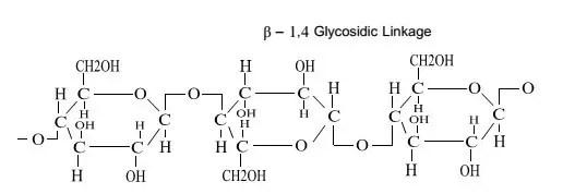 السيليلوز Cellulose
