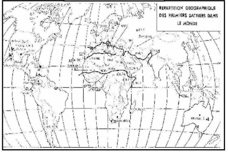 خریطة:- 2-توزیع النخیل المثمرة في العالم