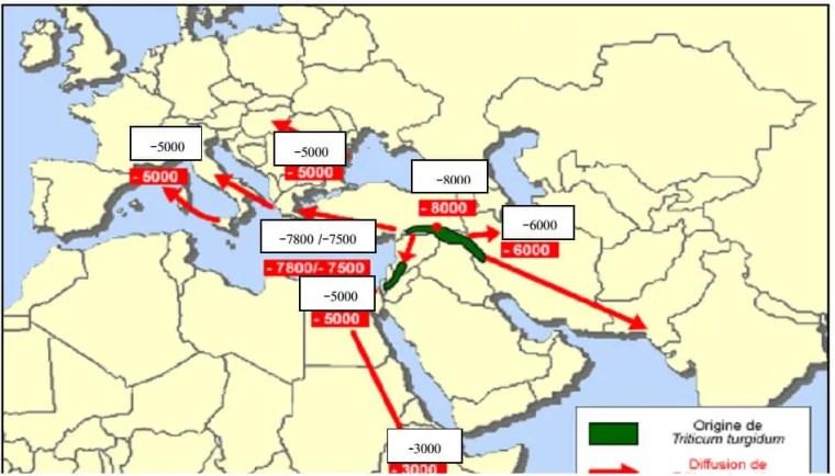الشكل 01: خريطة انتشار الأقماح الرباعية (Bonjean,2001)