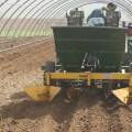 تقنيات زراعة البطاطا