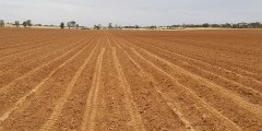 أهمية التربة