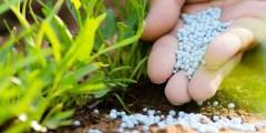 التوصيات والممارسات الزراعية الهامة للحد من تلوث البيئة وتحسين كفاءة استخدام الأسمدة