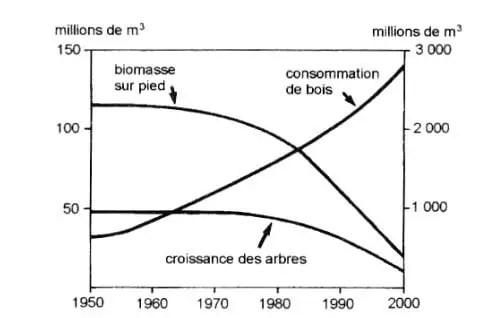 شكل (10) :تغیرات الكتلة الحية و نمو الأشجار بفعل استهلاك خشب التسخين في السودان خلال الفترة2000-1950.