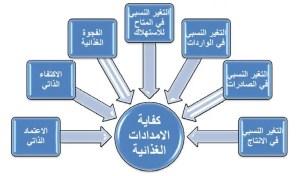 شكل :12مؤشرات محور كفاية الإمدادات الغذائية