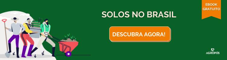 solos no brasil