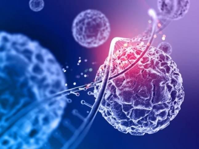 Biotecnologia na agricultura: contribuindo para a produção sustentável de alimentos