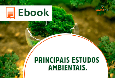 [EBOOK] Principais Estudos Ambientais.