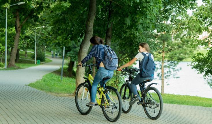 Florestas urbanas na Ecologia Urbana