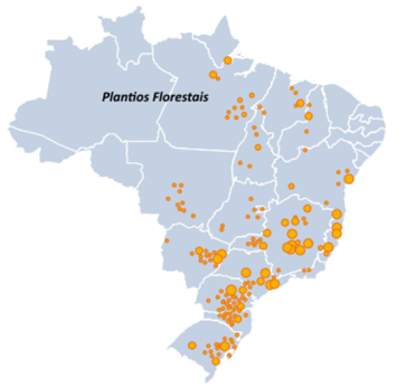Distribuição do cultivo de florestas plantadas no Brasil