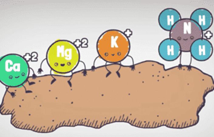 Como faz para aumentar a CTC do solo
