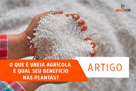 O que é Ureia Agrícola e qual seu Benefício nas Plantas?