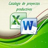 Proyectos productivos elaborados