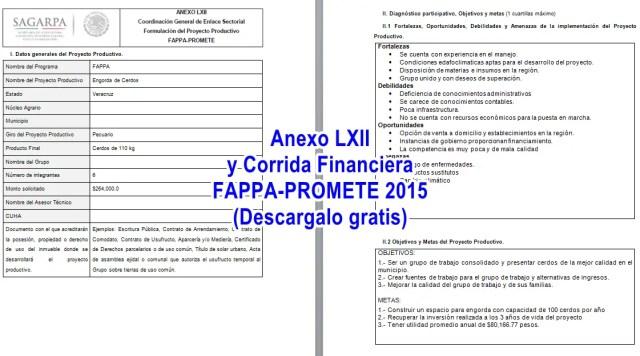 Ejemplos gratis de proyectos FAPPA y PROMETE 2015