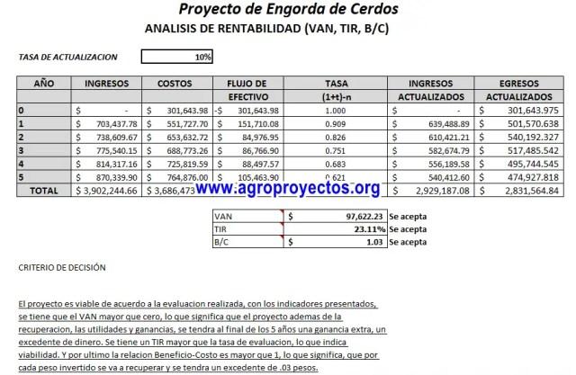 Corrida Financiera de Engorda de Cerdos Fappa y Promete