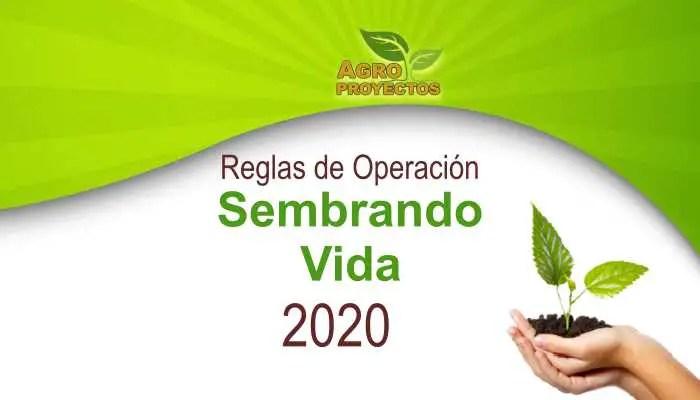 Reglas de Operación Sembrando Vida 2020