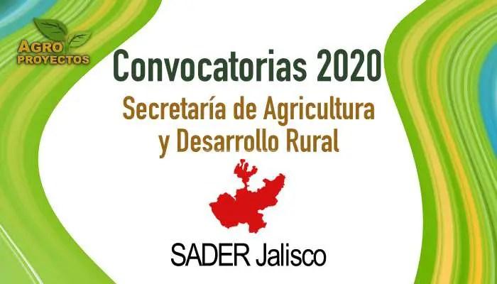 Convocarorias 2020 SADER Jalisco