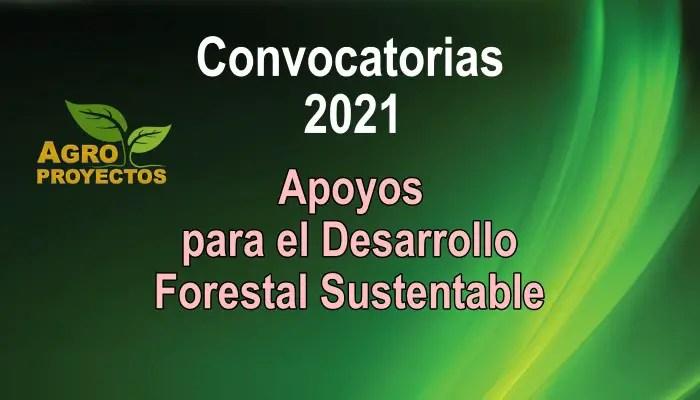 Convocatorias CONAFOR 2021