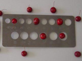 Calibre Plancha Para Frutas Pequeñas