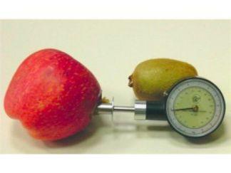 Penetrómetro para Fruta