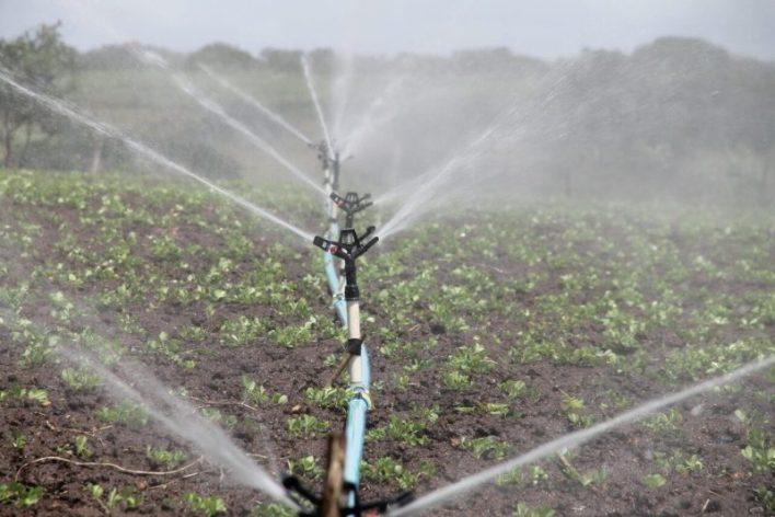 Foto de sistema de irrigação por aspersão