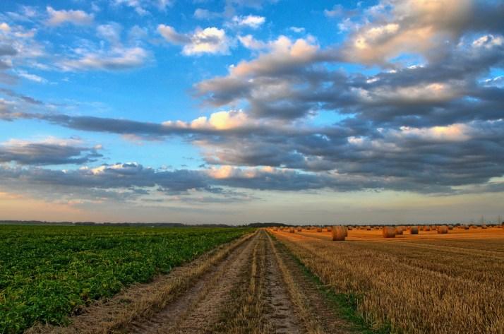 défis agriculture