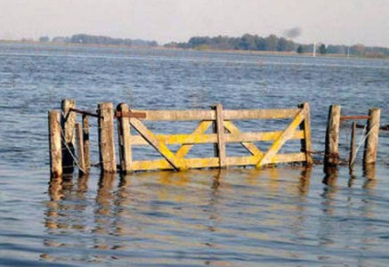 inundadoWP