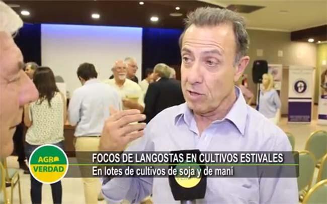 SENASA Cordoba - Director