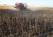 Incendios-ColoniaCocha 30 3 2018 sojas incendiadas w