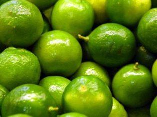 Saco de limón agrio