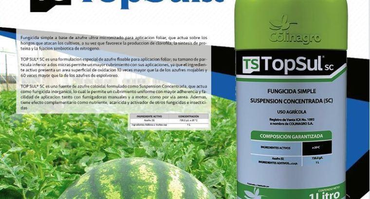 TopSulsc Fungicida