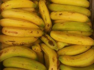 Banano uraba