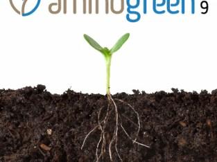 AMINOGREEN 9
