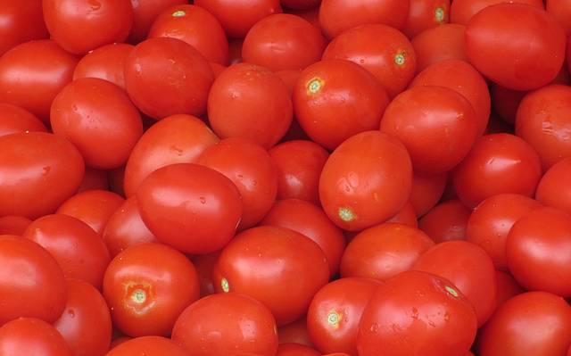 Compramos tomates bugalú