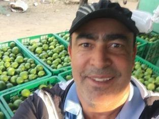 Vendo limones