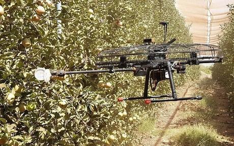 Llegó la hora de que los drones ayuden a los agricultores en sus cosechas