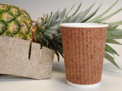 Filipinas experimenta con papel hecho con hojas de piña