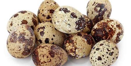 Tenemos huevos de codorniz