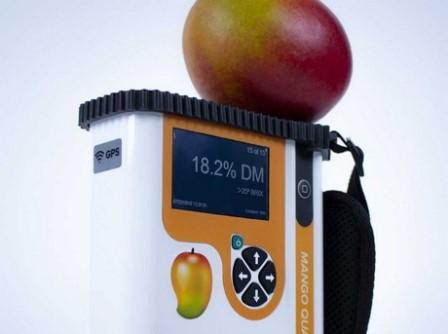 Presentan instrumento que mide la calidad del mango