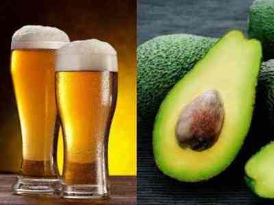 El aguacate, el nuevo ingrediente para fabricar cerveza