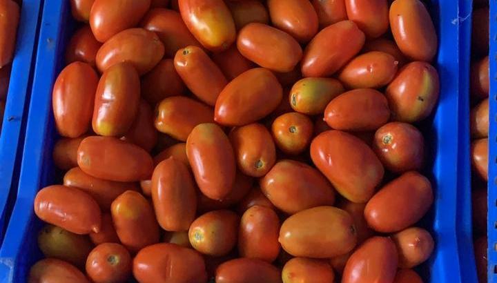 Tenemos tomates para pizzas